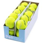 Petface Tennis Balls (21524)