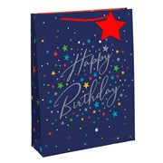 3524guys Party Gift Bag Medium (26967-3)