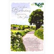 Simon Elvin Male Birthday Cards (27979-5)