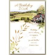 Simon Elvin Trad Male Birthday Cards (28731)