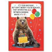 Simon Elvin Humourous Birthday Cards (28783)