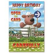 Simon Elvin Humourous Birthday Cards (28784)