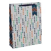 Male Spot Gift Bag Large (30132-2C)
