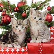 Ambiente Napkin Christmas Kitten (33314670)