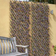 Smart Solar Vivid Violet Trellis 180 x 60cm (5604009)