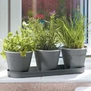 Smart Garden Windowsill Herb Pots (6030302)