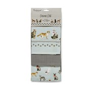 Cooksmart Curious Cats Tea Towels 3pack (TT1733)