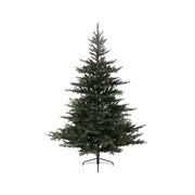 Grandis Fir Tree Green 240cm (681453)