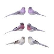 Feather Bird On Clip Asstd Colours (727081)