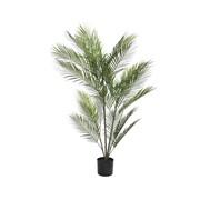 Green Fern In Pot 120cm (800780)