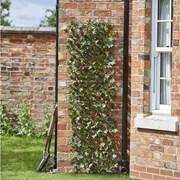Smart Solar Maple Leaf Willow Trellis 180 x 60cm (5045081)
