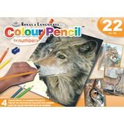 Royal Brush Colour By Pencil Gift Set (AVSCPN208)