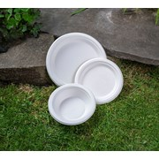 """Swantex Green Bagasse Round Plate 7"""" 100s (P7100B)"""