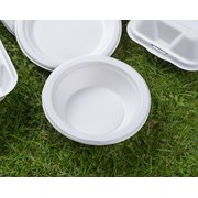 Swantex Green Bagasse Bowl 12oz 100s (B12B)