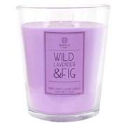 Baltus Indulgance 3 Wick Candle Wild Lavender & Fig X/lge (218007)