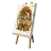 Beatrice Canvas Cutie 15x20 (CCTE115)