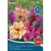 Taylors Garden Greats Bees & Butterflies (SV303)
