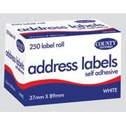 S/a Address Label 250s 37mmx89mm (C160)