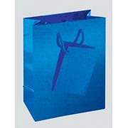 Hollographic Gift Bag Small (C303)