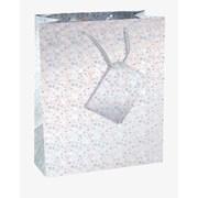 Hollographic Gift Bag Medium (C304)