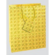 Hollographic Gift Bag Large (C305)