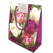 Double Tulips Bag 20s (CB32)