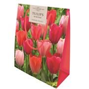 Darwin Tulips Bag (CB35)