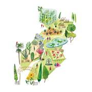 Botanical Garden Card (CISE1083)