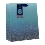Design By Violet Ombre Gift Bag Medium (DBV-74-M)