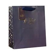 Design By Violet Safari Gift Bag Med (DBVED-10-M)