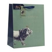 Design By Violet King Of The Jungle Gift Bag Lge (DBVED-11-L)