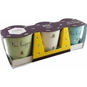 David Mason Design Bee Happy 3pce Pots With Tray (DD0988A01)