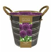 Outdoor Allium  Bucket (EB150)