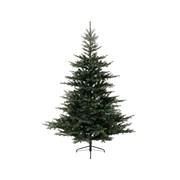 Grandis Fir Tree Green 150cm (681450)