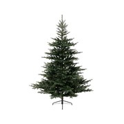 Grandis Fir Tree Green 210cm (681452)