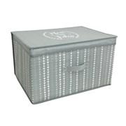 Jumbo Storage Chest Neat & Tidy (STO167331)