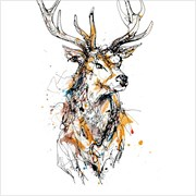 Blank Card Stag (KC93996)
