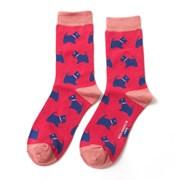 Miss Sparrow Westie Pups Socks Hot Pink (SKS185HOTPINK)