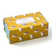 Miss Sparrow Hedgehogs Socks Box (BS002)