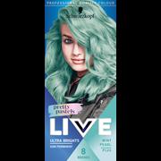 Live Colour Pretty Pastels Mint Pearl (2546847)