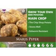 Tylrs Maris Piper Seed Potato 2kg (VAC484)