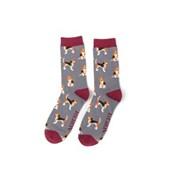 Mr Heron Beagle Pups Socks Grey (MH183GREY)