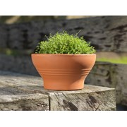 Y.f.pots Deep Ribbed Bowl 21cm (57642)