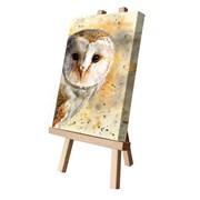 Olive Canvas Cutie 15x20 (CCTEL038)