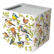 Birds Cube (PB4231)