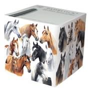 Horses By Caroline Cube (PB4254)