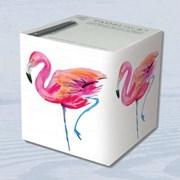 Flamingo Cube (PB4327)
