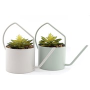 Sifcon Watering Can With Succulent 22cm (PS0125)
