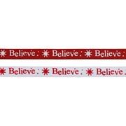 Asst Believe Ribbon 2.7mt (R195628)