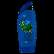 Radox Shower Mens Feel Awake 250ml (RSA)